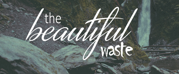 The Beautiful Waste